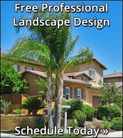 moon valley nursery, buy trees online, california nursery